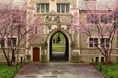 Apprendre l'anglais à l'Université de Princeton